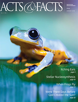 Free Creation News Publication