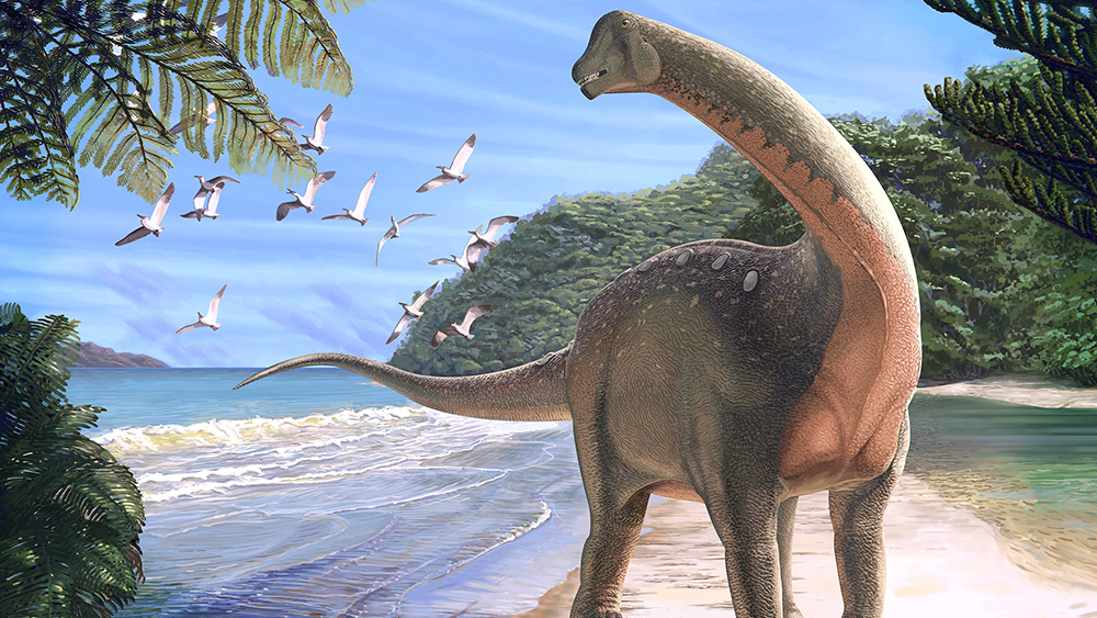 The Holy Grail of Dinosaurs?
