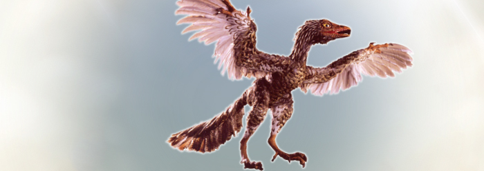 Major Evolutionary Blunders: The Imaginary Archaeoraptor