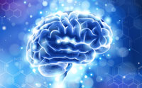 Your Brain Has More Memory Than the Internet