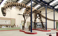 Britain's 'Oldest' Sauropod and a Jurassic World