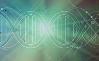 Life from an 'RNA World'?