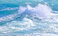 Scientists Describe Job's 'Springs of the Sea'