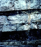 Coal seams near Price, Utah.  The lower seam is about 3' thick.