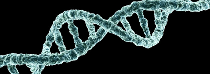 genetic mutation Most dna mutations are caused by mistakes that happen when a cell makes a copy of all its genetic information so it can divide into two new cells.