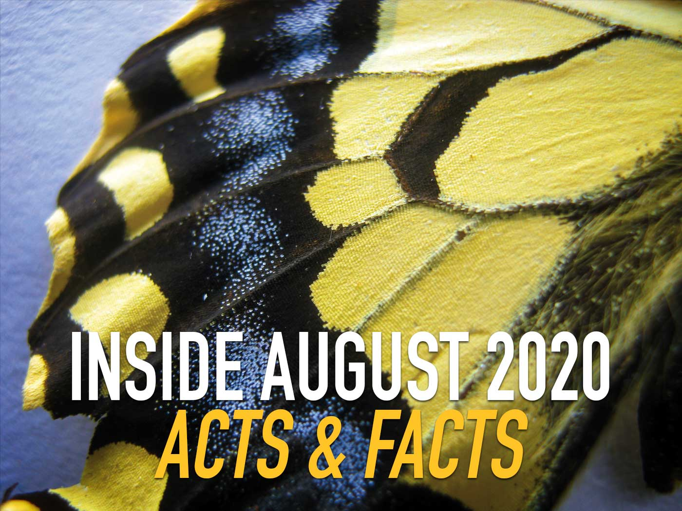 Inside August 2020 Acts & Facts