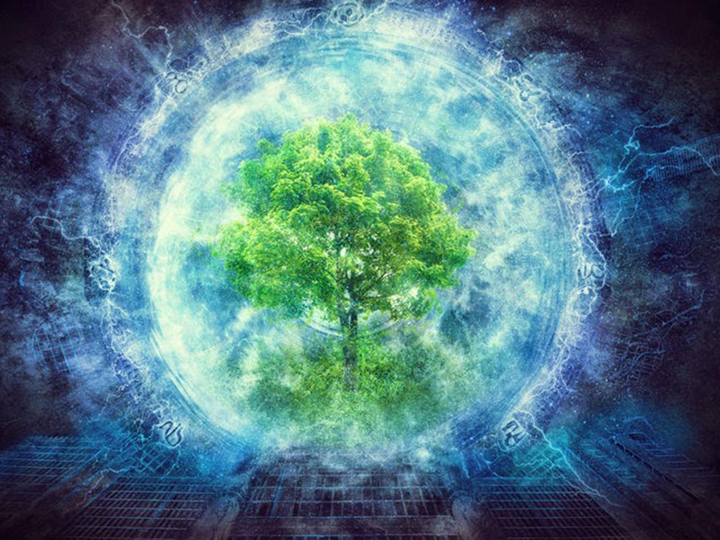 Evolutionists Sense Life's Design and Deify Nature