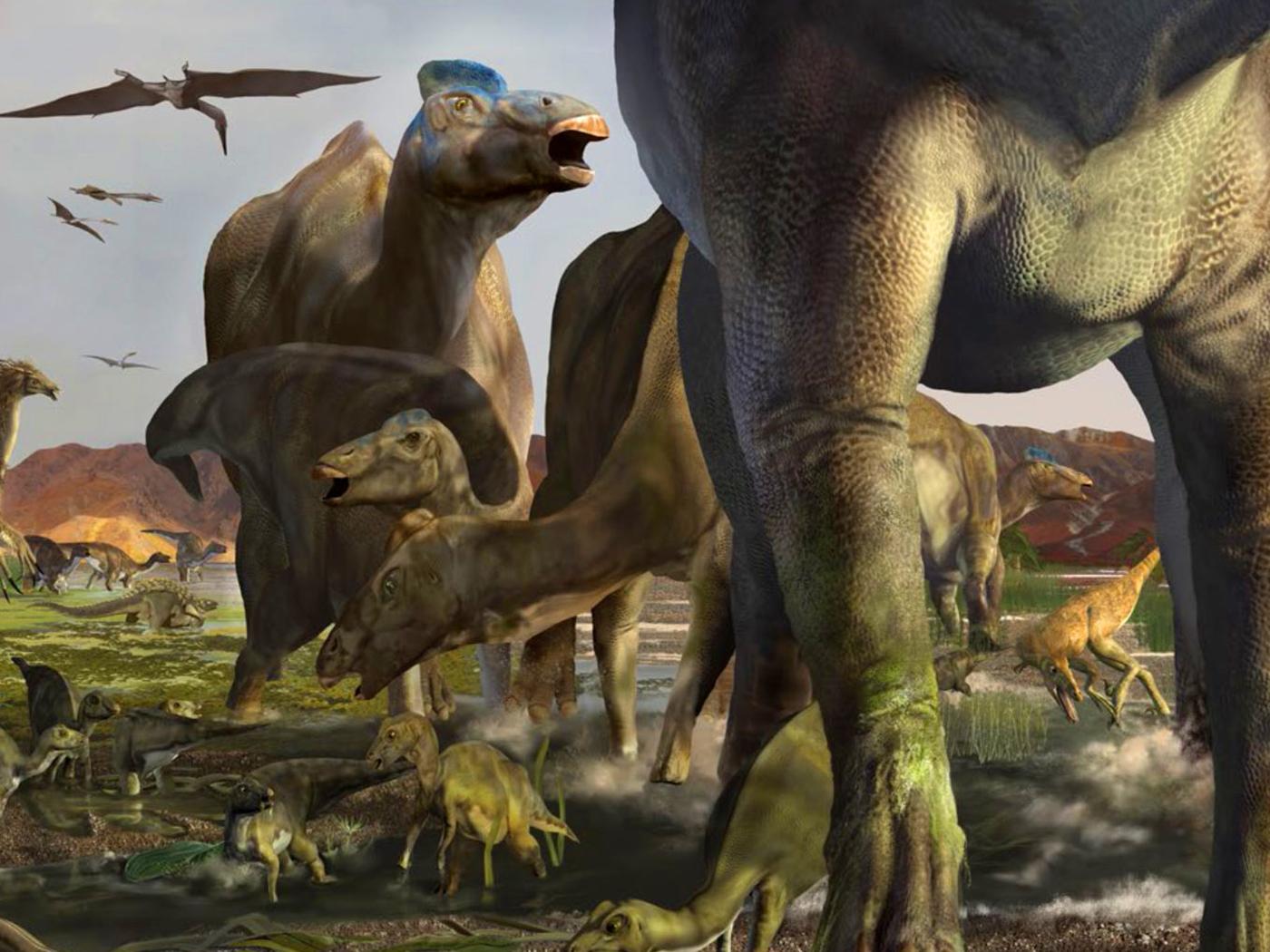 "Dinosaur ""Superhighway"" Explained by Global Flood"