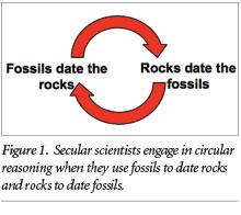 Carbon dating circular reasoning