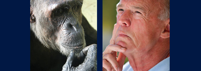 Human-Chimp Genetic Similarity: Is the Evolutionary Dogma Valid?