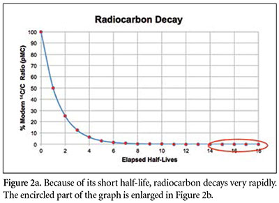 Explain the process of radioactive carbon dating