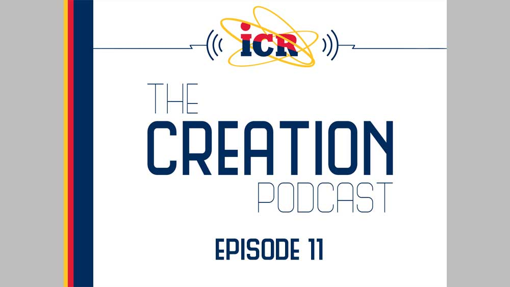 What Can You Expect from the ICR Discovery Center?