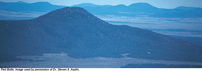 Red Butte. Image used by permission of Dr. Steven A. Austin.