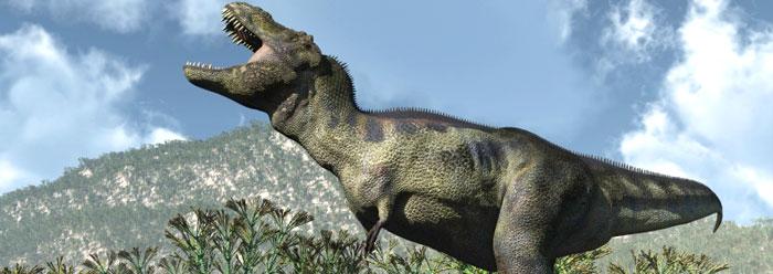 Real Dinosaurs T Rex Dinosaur Soft Tissues:...